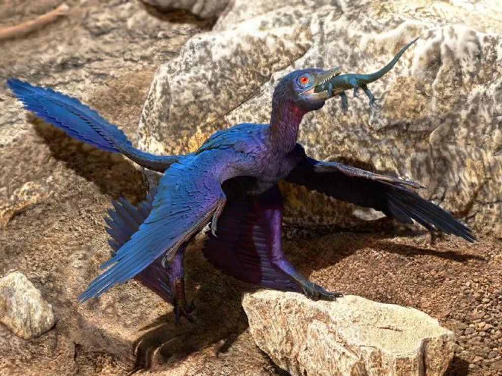 Ilustración del microraptor engullendo al lagarto.