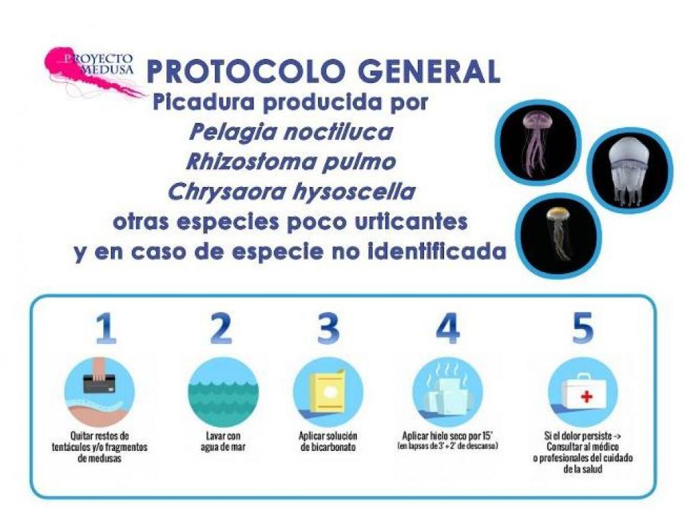 Recomendaciones de la guía del proyecto Medusa del CSIC