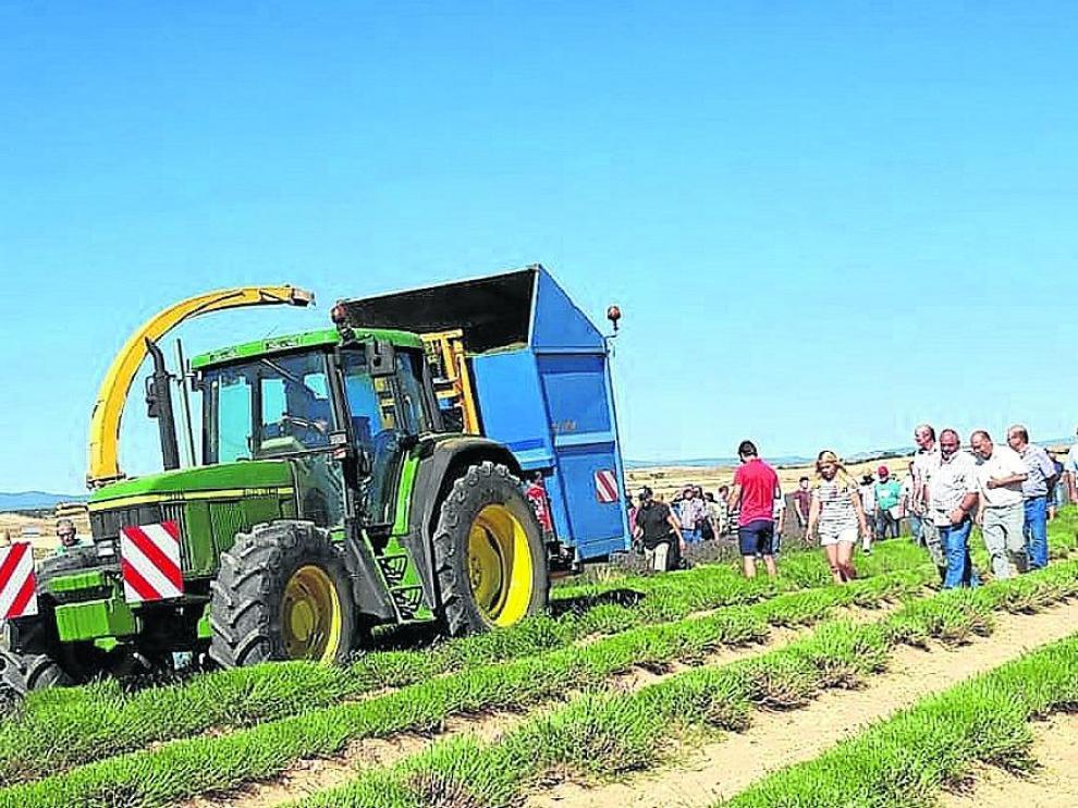Los agricultores conocieron los cultivos de aromáticas de la Fundación Térvalis, en la foto.