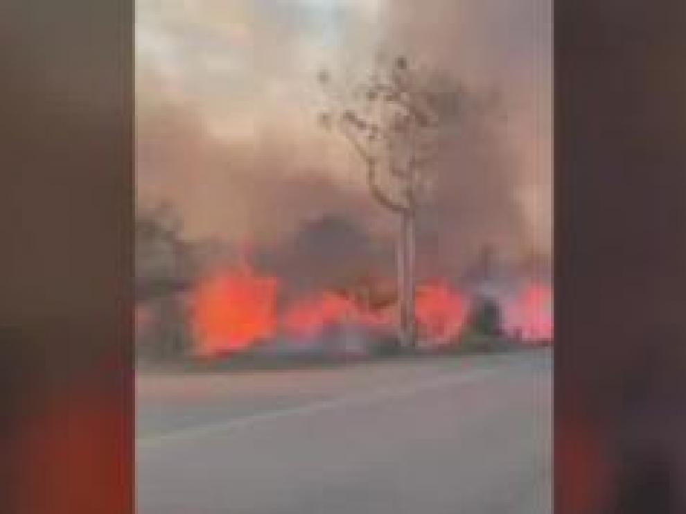 Son 9.000 Incendios que llegan al borde de carreteras como esta y ante los que el estado brasileño no tiene recursos. Para los ecologistas lo que está pasando está claro. Los agricultores prenden fuegos para limpiar terrenos aprovechando que no hay multas.