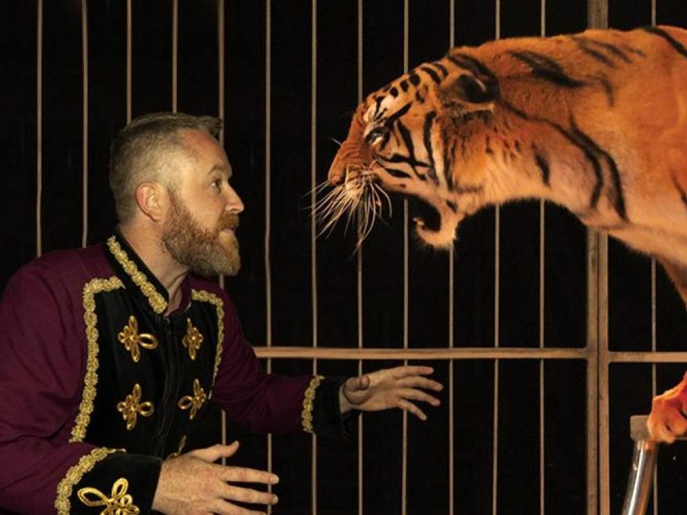 Imagen promocional del espectáculo Zoorprendente, el circo de los animales.