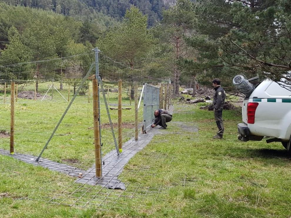 Vallado electrificado de protección para un colmenar del Valle de Arán.