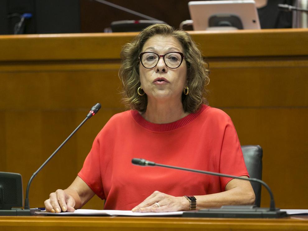 La consejera de Sanidad, Pilar Ventura