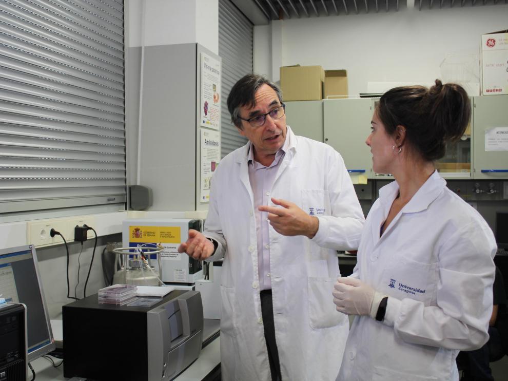 Javier Sancho, catedrático de la UZ, coordina un proyecto de investigación internacional para desarrollar antimicrobianos contra la bacteria 'Helicobacter pylori'.