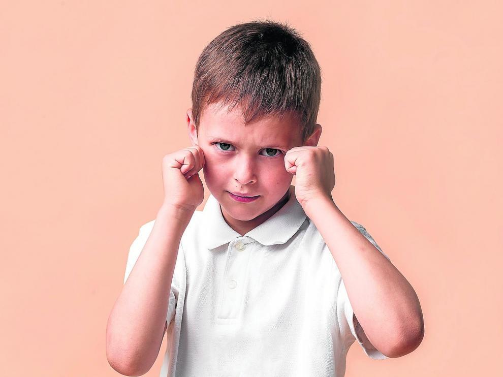 Los niños, por lo general, suelen ser agresivos porque antes lo han sido con ellos. Hacemos lo que vemos