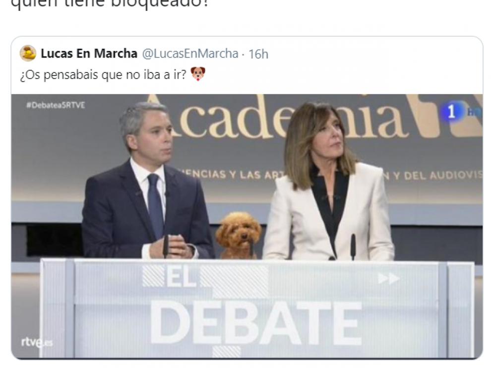 polemica-en-twitter-por-un-meme-del-perr