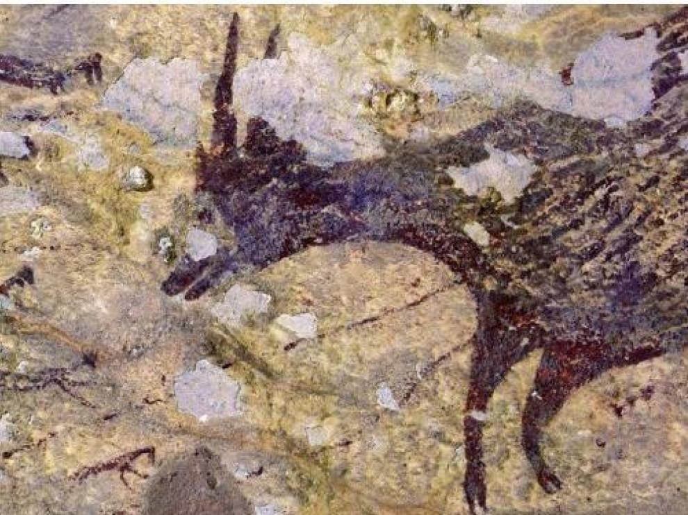 Una de las imágenes de caza recién descubiertas.