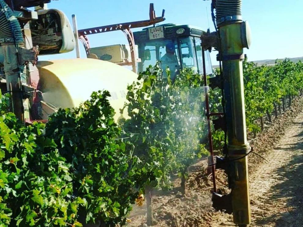 Una máquina, durante la pulverización de ozono en las viñas.