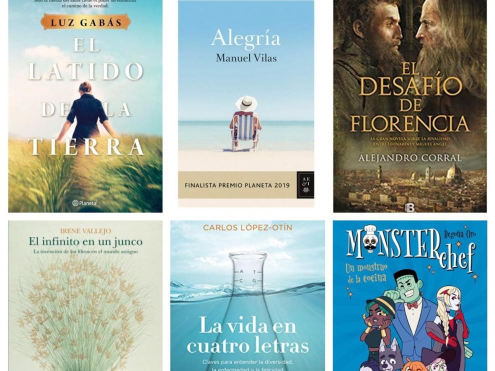 Los libros más vendidos de Zaragoza en 2019.