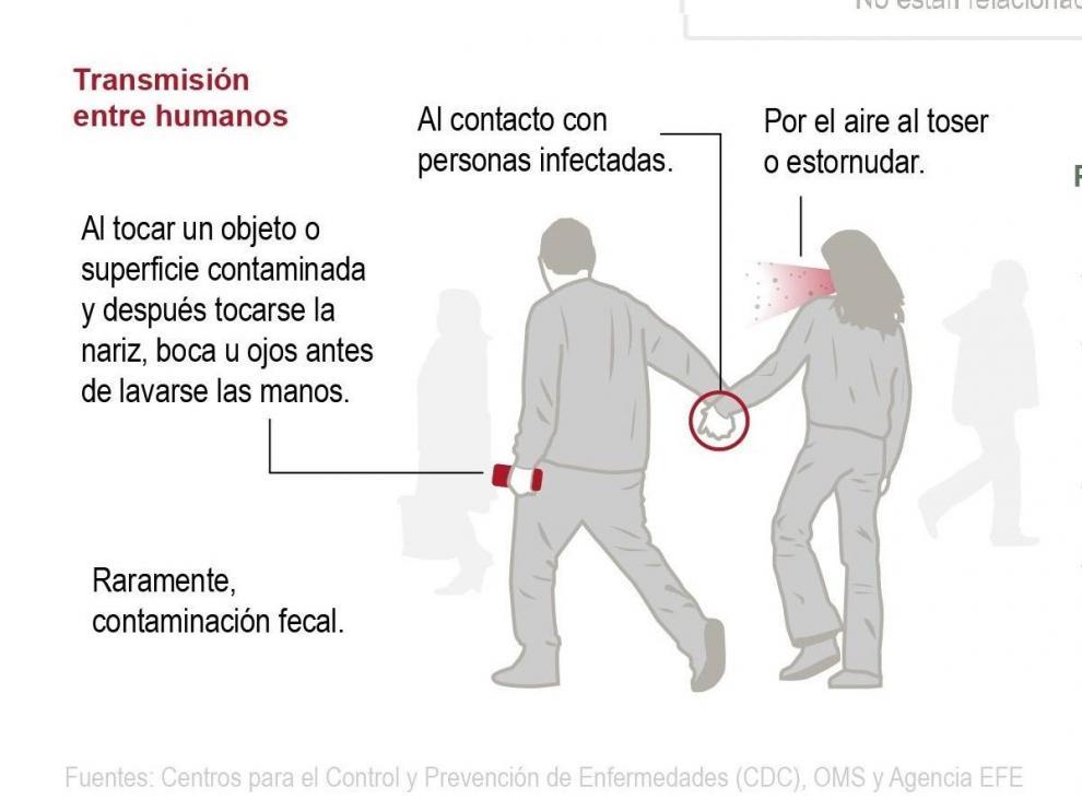 Cómo actuar ante el brote de coronavirus