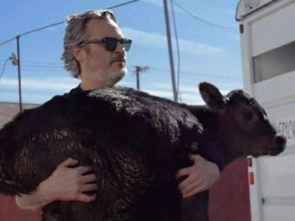 Joaquín Phoenix rescató a una vaca y a su ternero tras ganar el Óscar