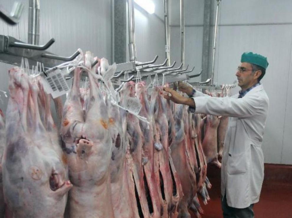 Dos residencias de Calatayud reciben carne de cordero de ganaderos solidarios.
