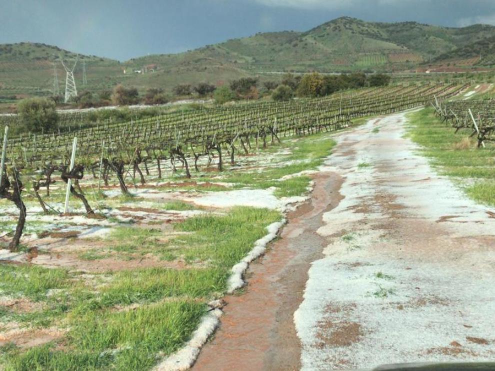 Fuerte granizada en fincas de cultivos de la zona de El Frasno