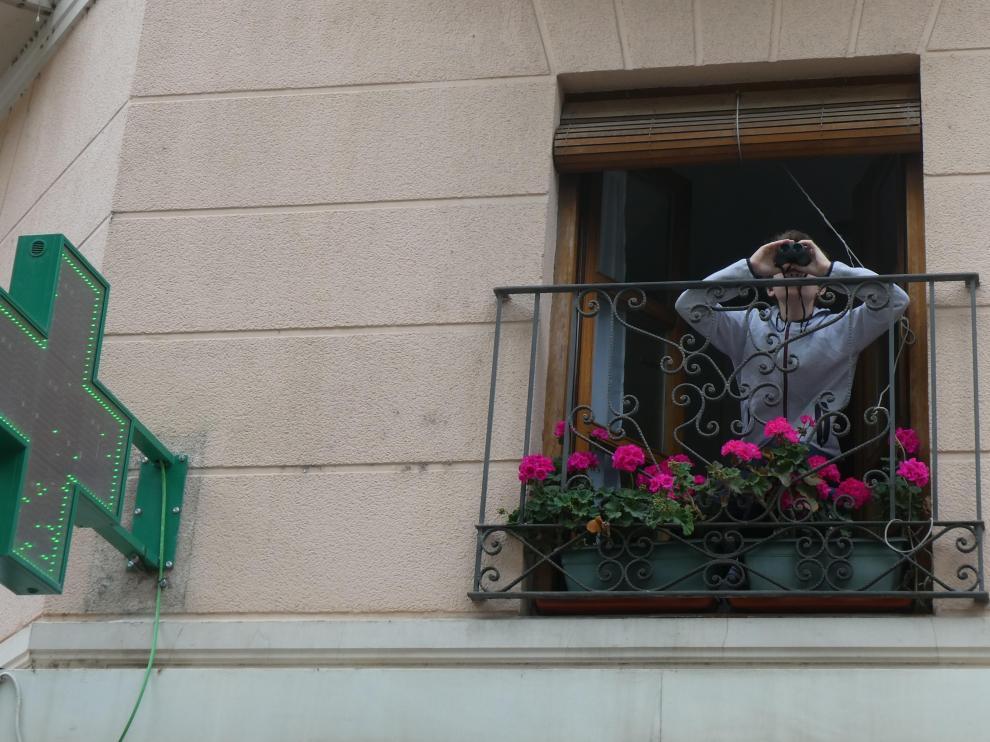 Un niño observando pájaros desde el balcón de su casa.