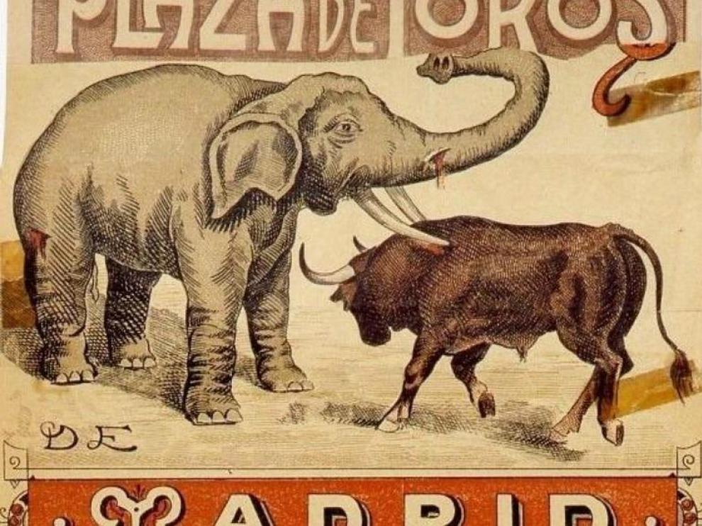 Elefante y toro