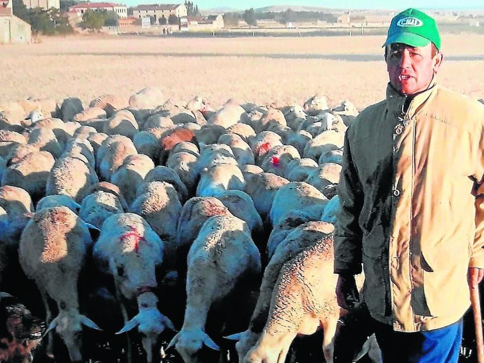 Amado Lizama, junto a su rebaño de ovejas en la localidad turolense de Bello.
