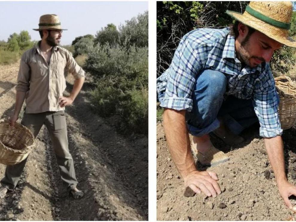 Adrián (a la izda) y Jaime Casanova están apostando por el cultivo del azafrán en Torrevelilla.