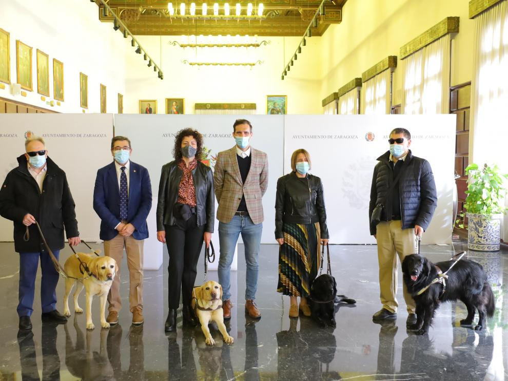 El Ayuntamiento de Zaragoza financiará el registro de ADN de todos los perros guía de la ciudad