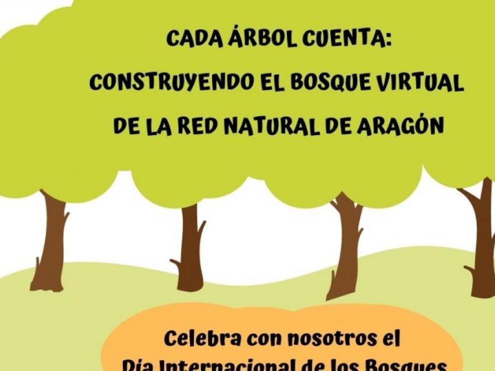 Propuesta de la DGA para el Día Internacional de los Bosques 2021