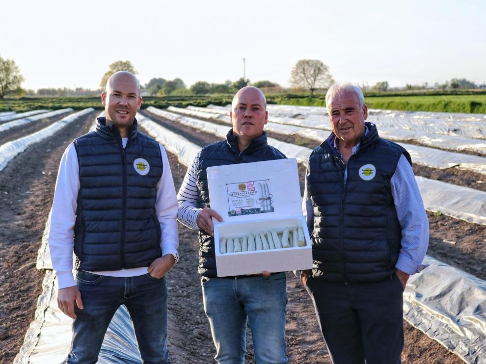 Los hermanos Jorge y Carlos Sofín y su padre Manuel en la finca de Novillas donde cultivan sus populares espárragos.