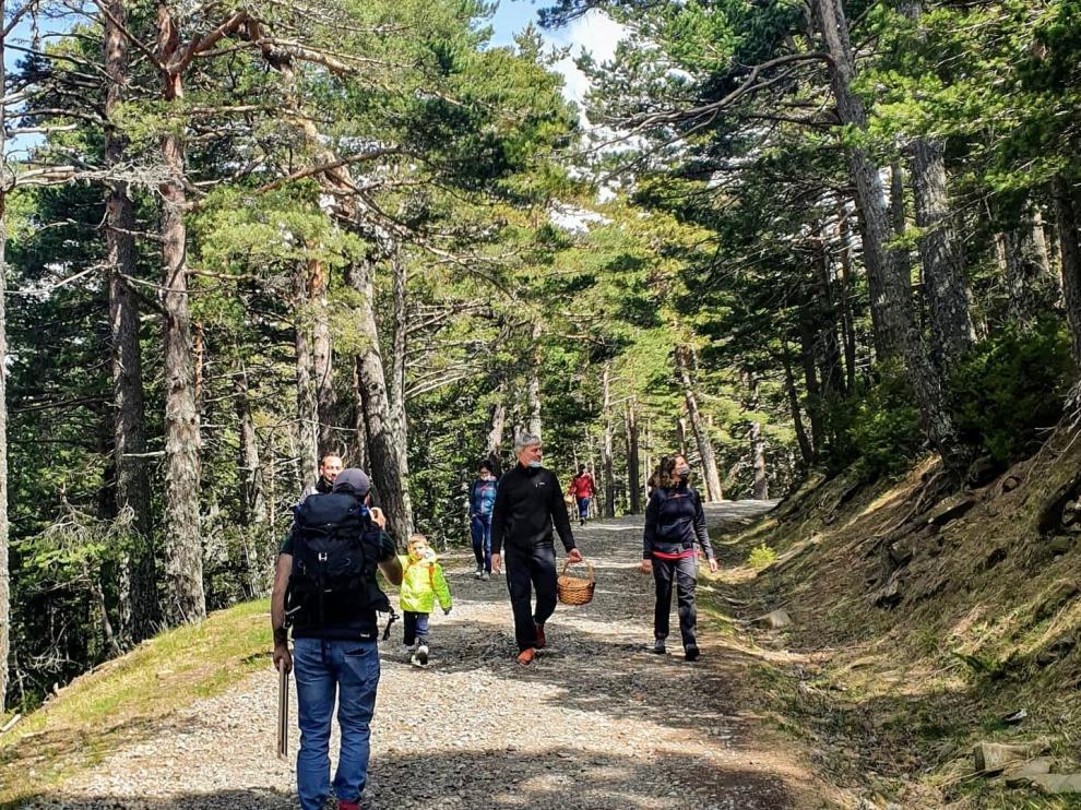 Salida organizada por Esporas del Pirineo.