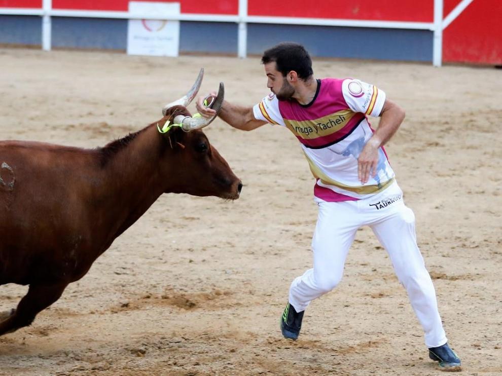 Mario González, en un concurso celebrado en Cariñena en 2020.