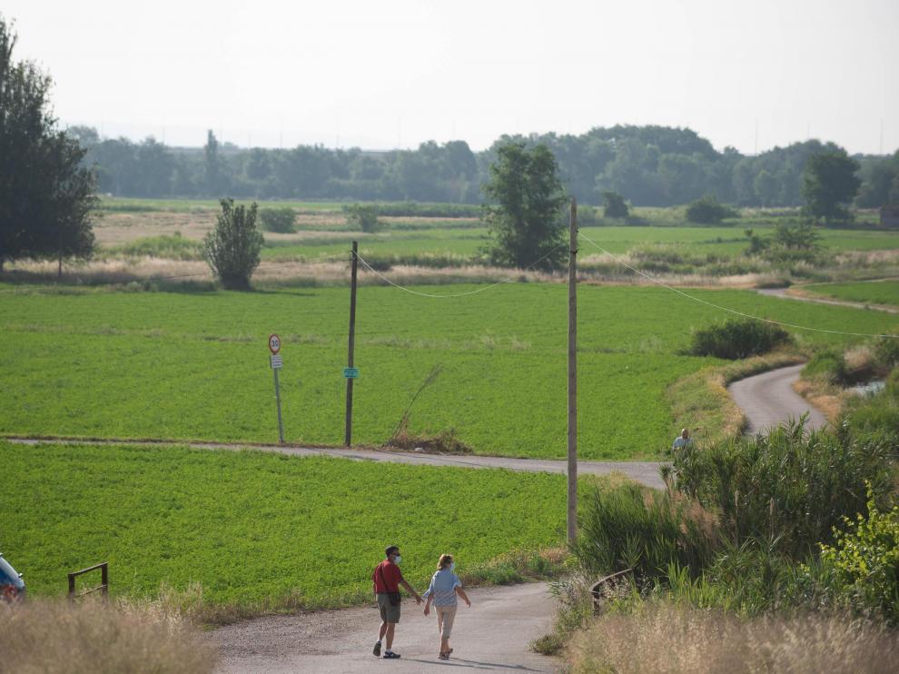 La alfalfa y el cereal dominan las casi 300 hectáreas de huerta de Las Fuentes.