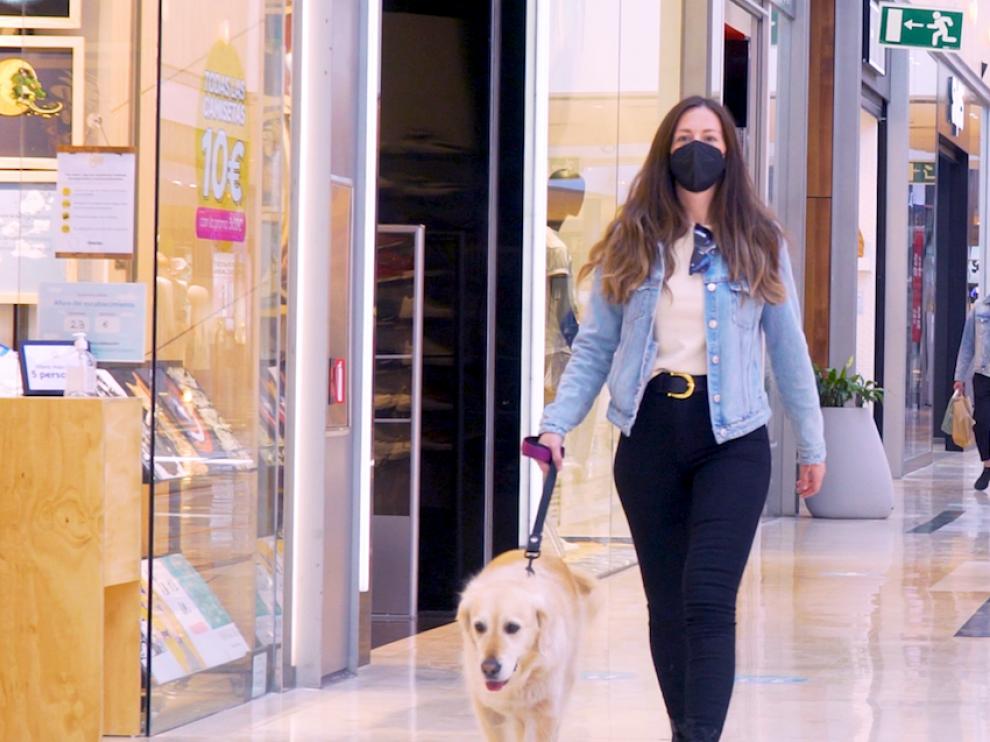 Un perro pasea por la galería comercial de Puerto Venecia.