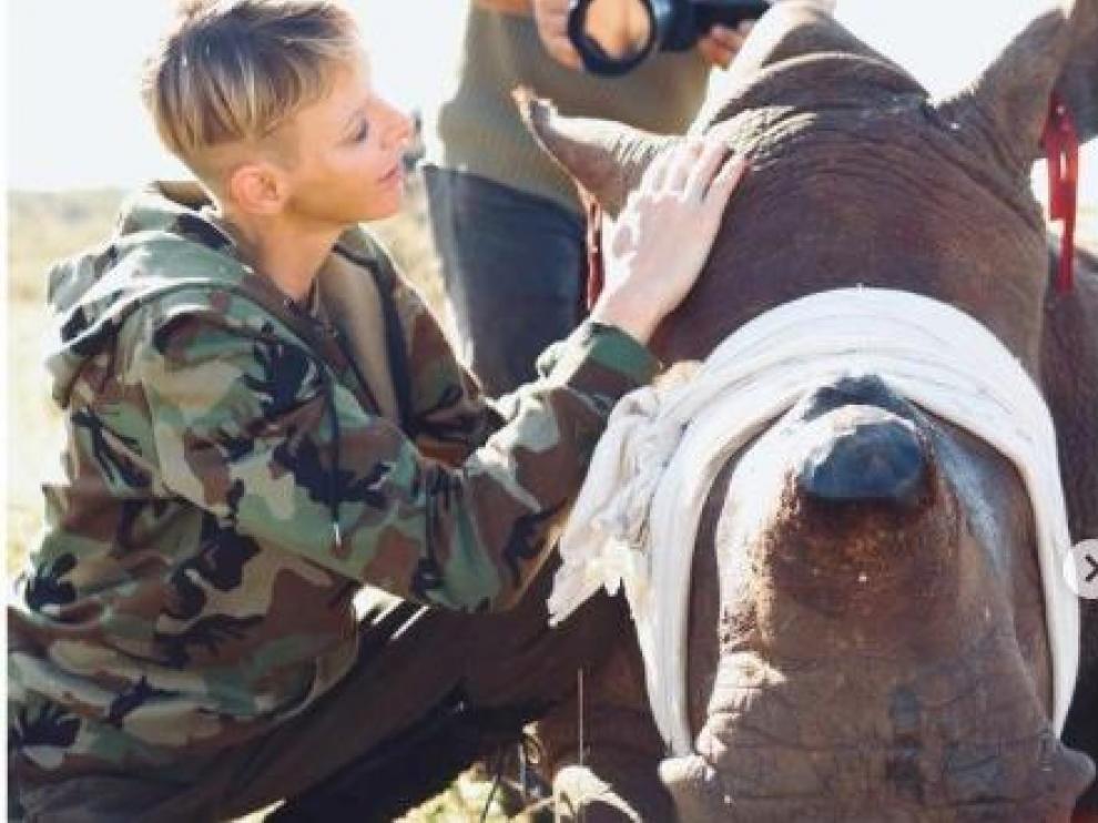 Charlene de Mónaco, en Sudáfrica, abrazando rinocerontes