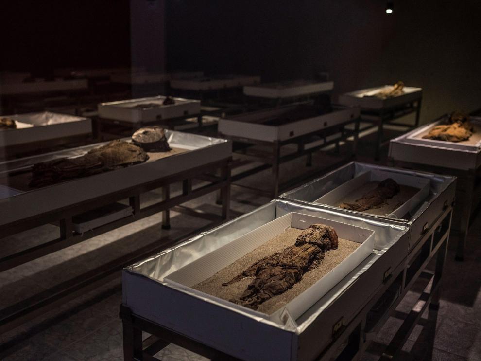 Las momias Chinchorro, tesoro arqueológico de Chile patrimonio de la Humanidad