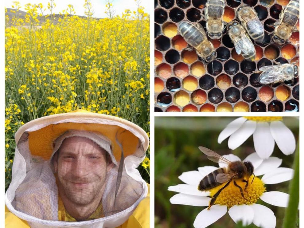 Roberto González, el joven apicultor detrás de Apicultura La Cerrada, y algunas de sus abejas.