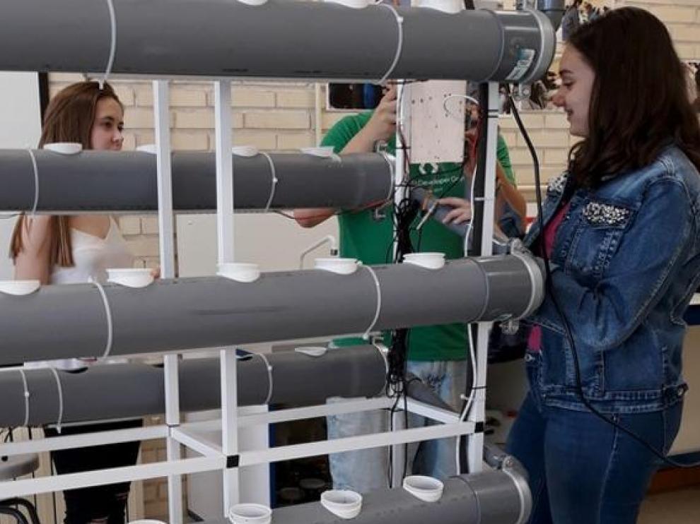 Proyecto Smart Hidroponic