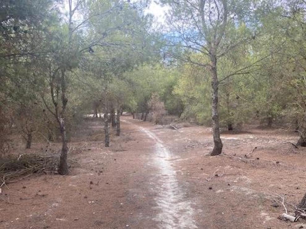 Parte de la ruta propuesta por La Puebla de Alfindén.