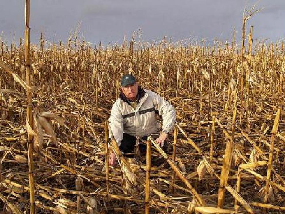 Miguel Ángel Carilla, agricultor monegrino, muestra los daños provocados por el vendaval.