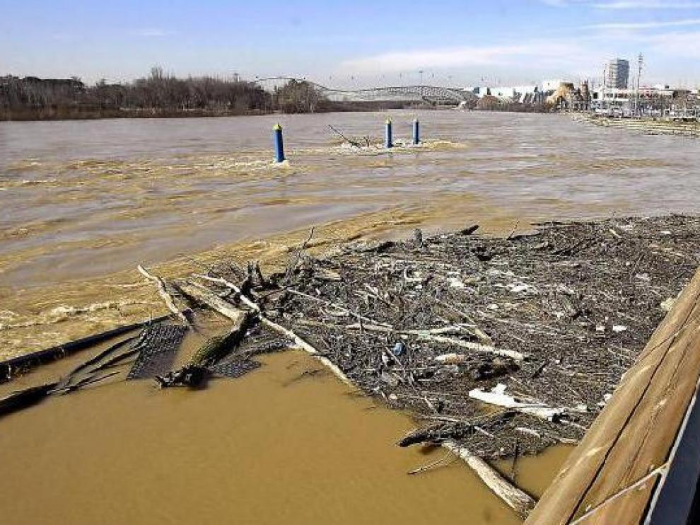 Muchos zaragozanos se acercaron ayer a las riberas para contemplar la crecida del Ebro.