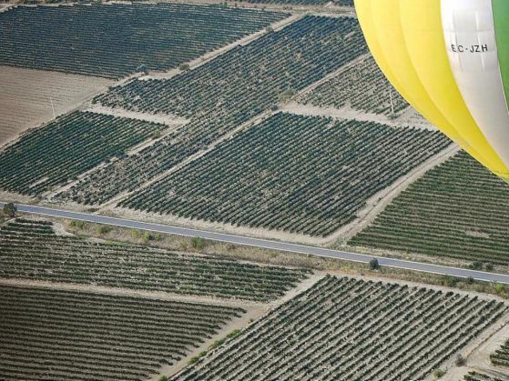 Un globo aerostático sobrevuela los viñedos del Somontano.