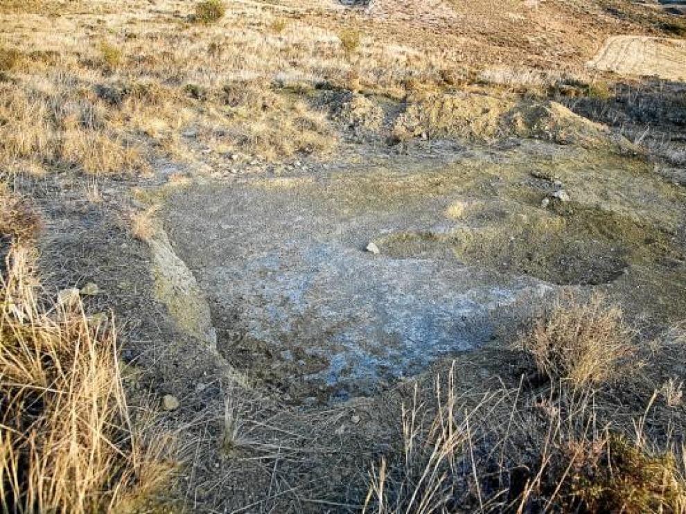 Hallan restos de un dinosaurio de hace 120 millones de años en Berdejo