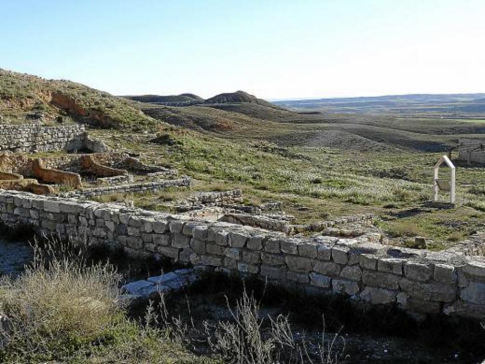 Imagen del yacimiento arqueológico de Velilla, en la que se aprecia la vegetación existente.