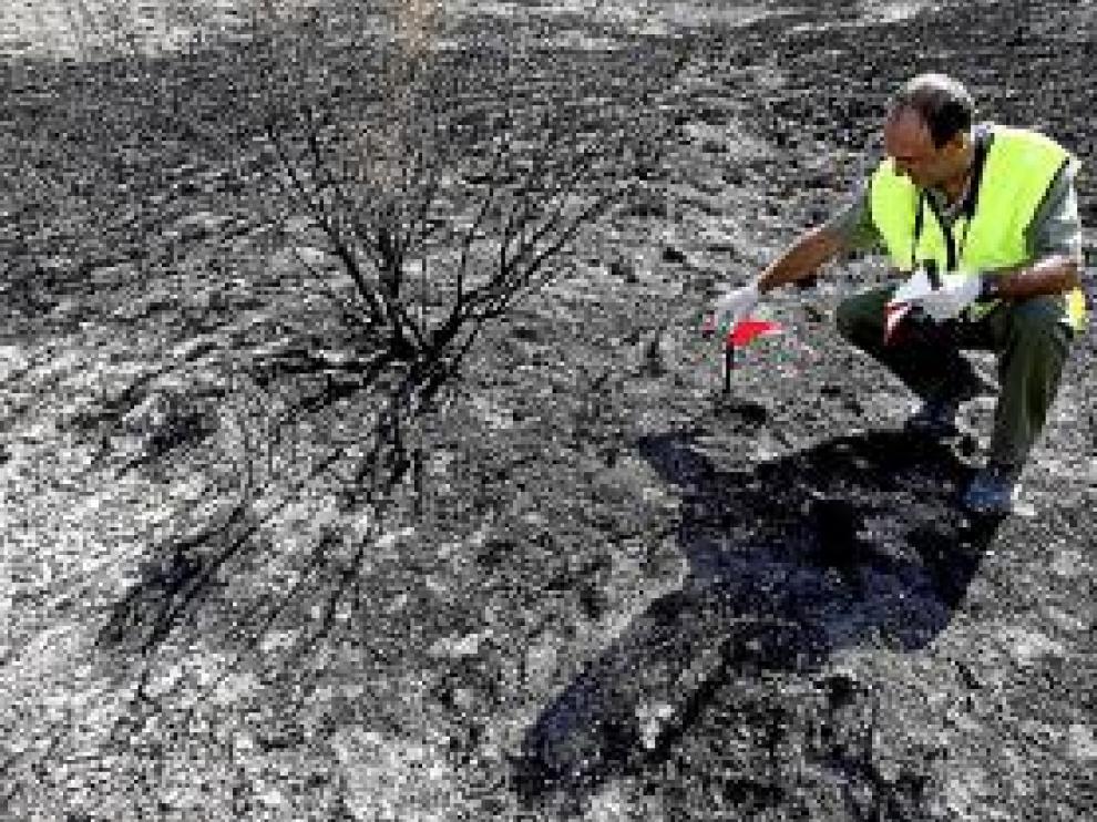 El CSI de los incendios forestales