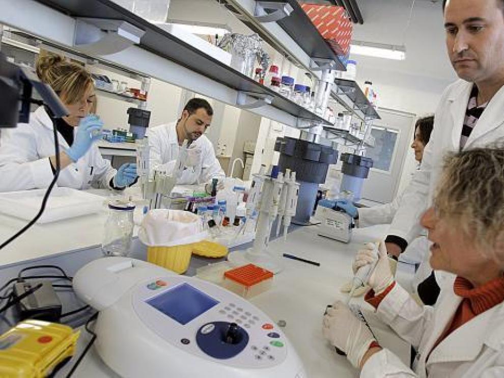Un grupo de investigadores en la unidad de producción animal del CITA.