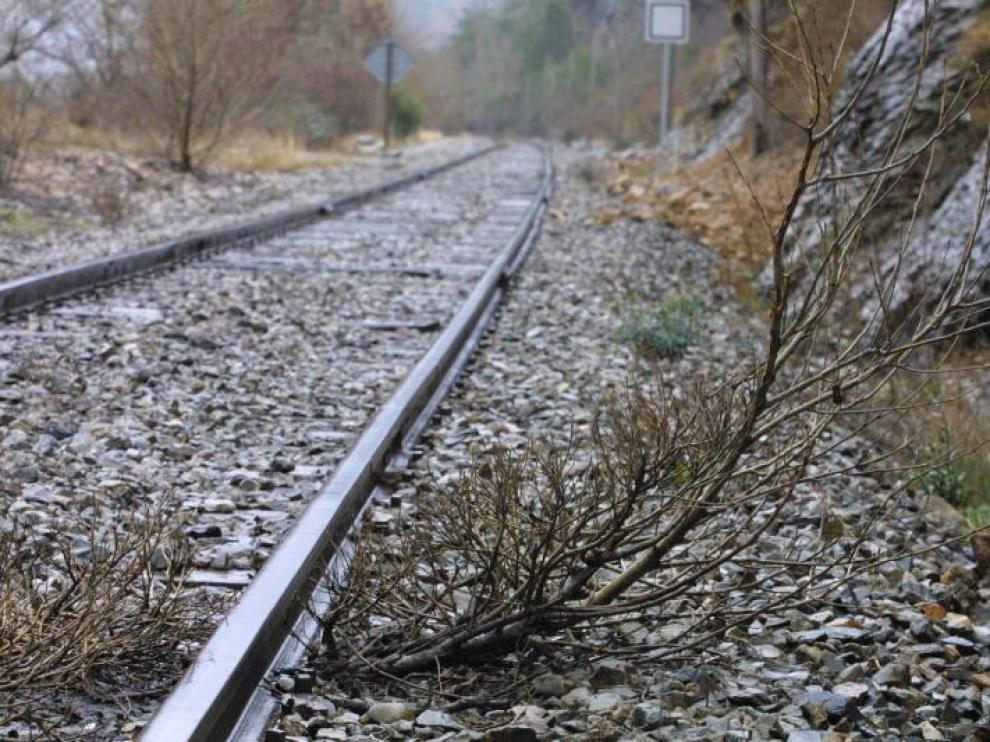 Absoluta desidia y dejadez. La línea del Canfranc está abandonada 40 años después de su cierre.