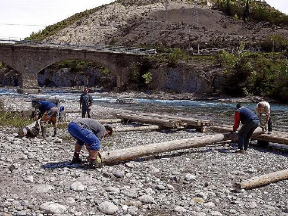 Los pesados troncos son transportados por caballos hasta las orillas del Cinca y allí se unen.