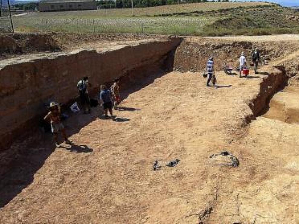 Excavaciones arqueológicas en el foso de la ciudad celtibérica.