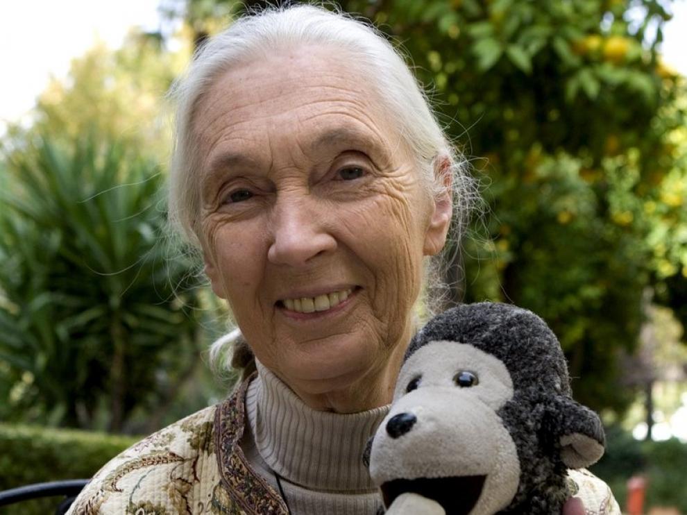 La naturalista Jane Goodal presenta 'El viaje de Jane'