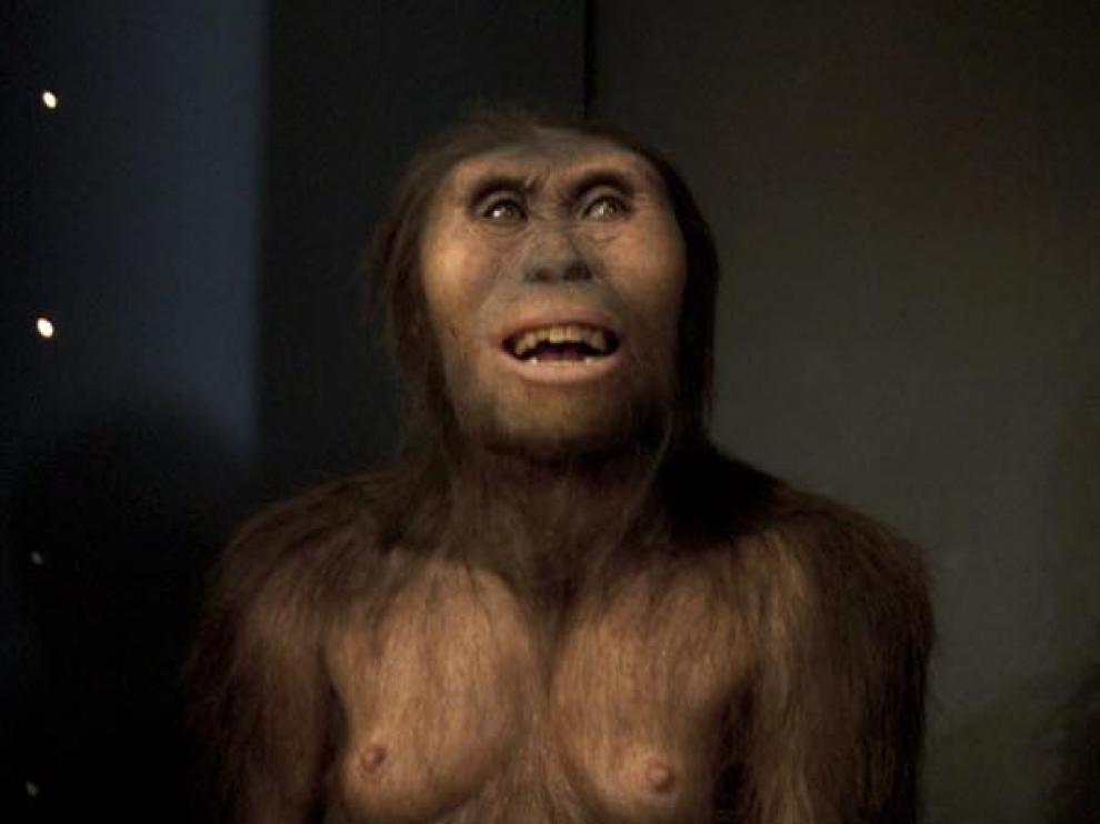 Reconstrucción artística de Lucy -Australopithecus afarensis- en el Museo de la Evolución de Burgos. Lucy parece poco más que un chimpancé erecto y ya alberga, sin embargo, la semilla de lo que será humano