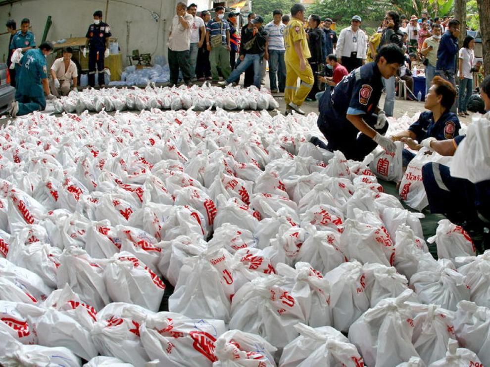 La Policía recoge las bolsas con los cuerpos de los nonatos