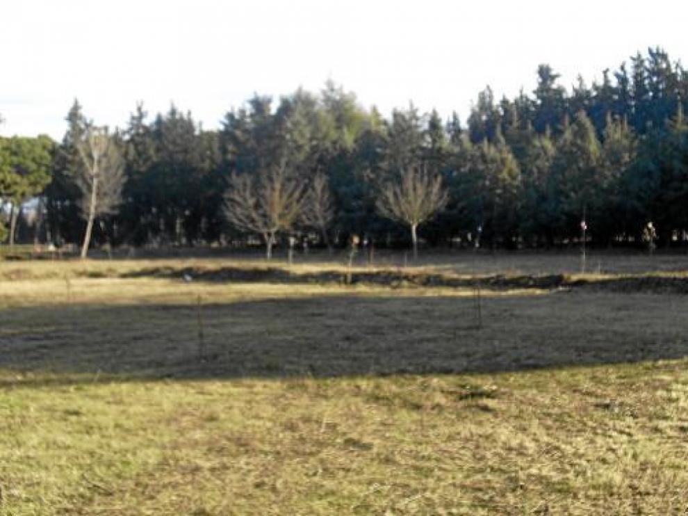Los huertos sociales se ubicarán en una parcela municipal de la zona de los Sotos.