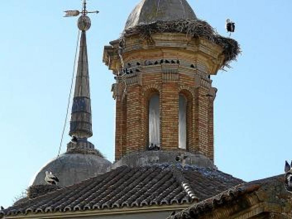 Las aves han invadido la torre y la cubierta del templo.