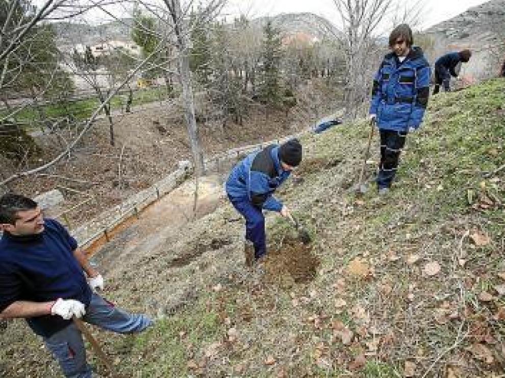 Los jóvenes trabajan en una ladera de Utrillas.