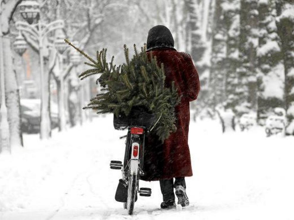 Una mujer transporta en bicicleta un árbol de Navidad a través de un paraje nevado, en Alemania.